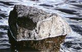 Stor sten | Big Rock