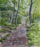 Grön skog | Green Forest