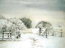Bjärred om vintern