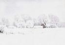 Vinter över Slogstorp
